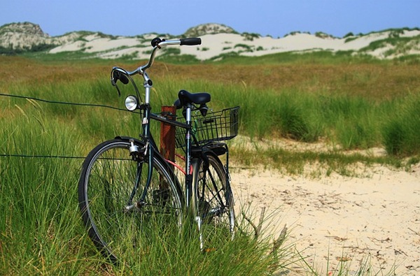 Where to Find Bicycle Rentals in Myrtle Beach