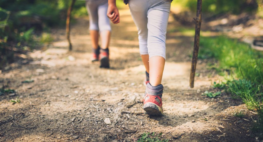 3 Walking Trails in Myrtle Beach to Explore